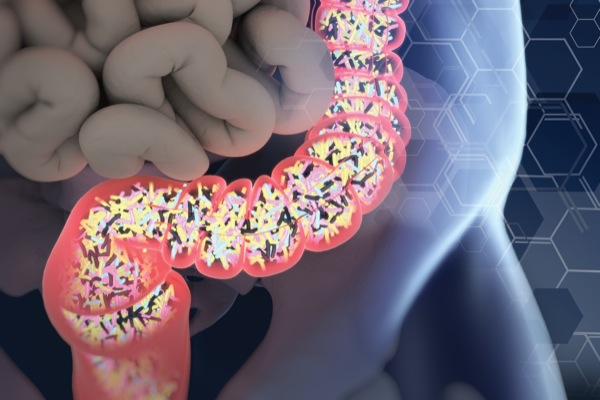 Clostridium difficile, l'evoluzione del super batterio intestinale